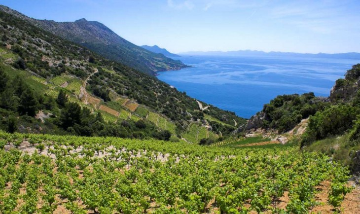 7 best places to take a wine related trip winedom for Best places to take a vacation